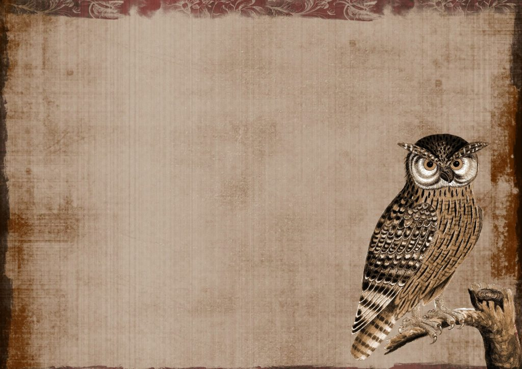 background-1666637_1920.jpg