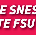 Vote SNES rectangle rose