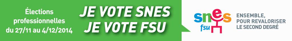 Vote SNES rectangle vert