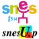 SNES-SNESup